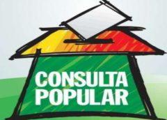 Ciudadanos defendieron la validez de las consultas populares en defensa del medio ambiente