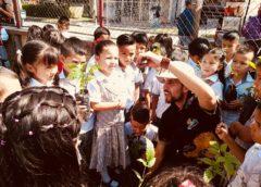 Centenares de guayacanes amarillos se siembran en Pitalito